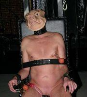 wifesharing cuckold sklavin sucht dom