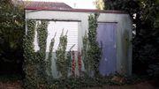 gartenhaus in ludwigshafen pflanzen garten g nstige angebote. Black Bedroom Furniture Sets. Home Design Ideas