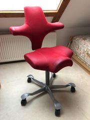 Bürostuhl ergonomisch HAG Capisco 8106 -
