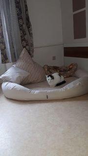 orthopädisches Bett - Hundekorb - 140cm - beige
