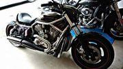 Harley-Davidson Vrod
