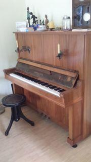 Klavier Alexander Soffke