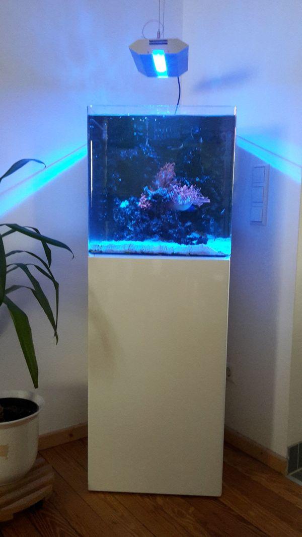 hochtwertiges Blau Aquarium Würfel Blau 90 Liter mit Unterschrank ...